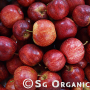 delicious red organic apple gala