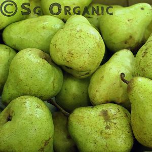 juicy organic packham pear