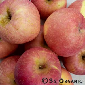 juicing-apple-red_sgo