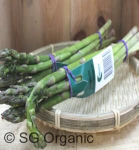 sg organic asparagus