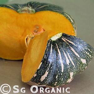 sweet fluffy organic japanese pumpkin