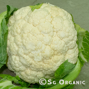cauliflower_sgo