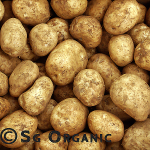 all-purpose organic potatoes sebago