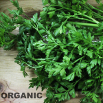 fragrant organic parsley flat